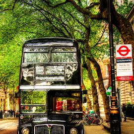 Black London Bus by Piotr Owczarzak - Transportation Automobiles ( old, bus, hdr, london, street, united kingdom, double-decker )