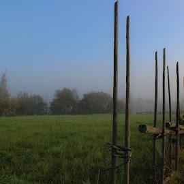 Misty morning by Jarmo Ainasoja - Landscapes Prairies, Meadows & Fields
