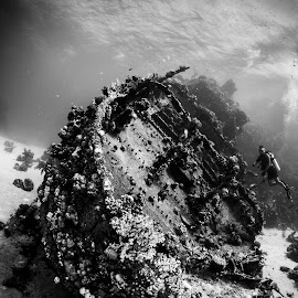 shipwreck by Catalin Ienci - Landscapes Underwater ( black and white, underwater, shipwreck, wreck, scuba )
