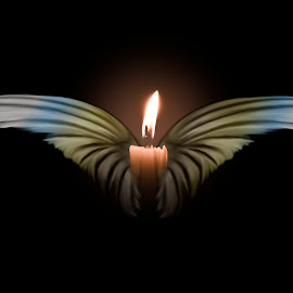 wings by Dietmar Kuhn - Illustration Abstract & Patterns ( lit, candle, wings, moody, flame )