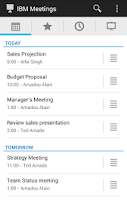Screenshot of IBM Connections Meetings