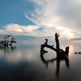 pecaron by Agus Wahyudi - Landscapes Beaches