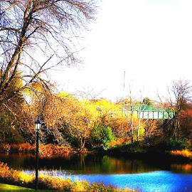 Simplicity by Jennifer Schmidt - Landscapes Travel ( autumn leaves, fall colors, autumn, autumn colors, pond,  )