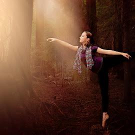 Enchanted Forest Ballerina by Darya Morreale - People Portraits of Women ( arabesque, forest, ballerina, sunlit, dancer,  )