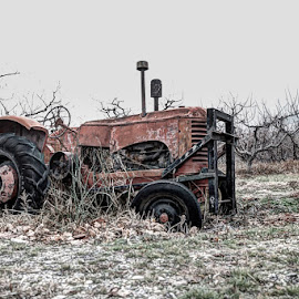 Life Is Over by Ron Mullins - Transportation Other ( farm, old, farmer, finished, tractor )