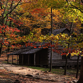 Bud Ogle Place  by Norm Dunlap - Buildings & Architecture Public & Historical ( bud ogle place - cabin - tennessee - smoky mountain national park - sevier county )