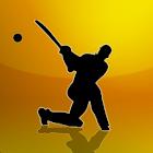 T20League TimeTable 2012 icon