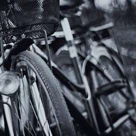 OLD BICYLE by Mochamad Iskandar - Transportation Bicycles