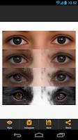 Screenshot of InstaEyesPic - Animal Eyes