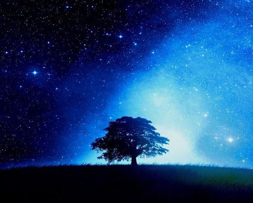 звездное небо картинки на рабочий стол телефона № 269960 без смс