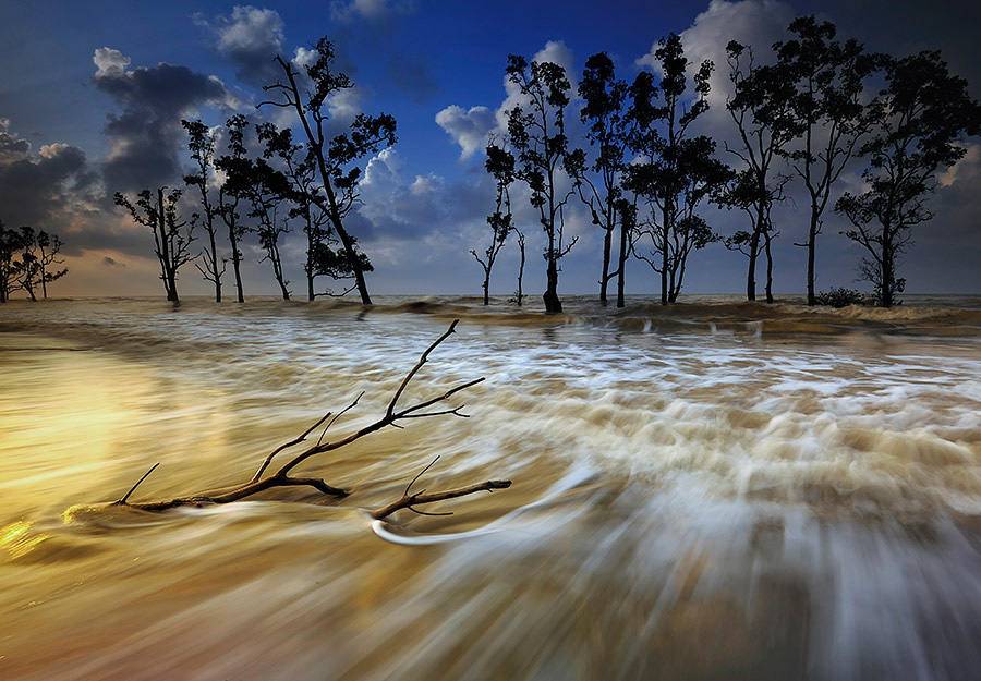 morning wave by Dadan Ramdani - Landscapes Beaches ( color, colors, landscape, portrait, object, filter forge )
