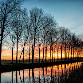 Damme by Colin Dixon - Landscapes Waterscapes ( water, canals, sunset, trees, belgium, damme, glow )