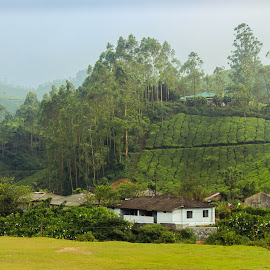 House in the mountain by Pallavi Parab - Novices Only Landscapes ( hills, mountains, pallavi parab, kerala, munnar )