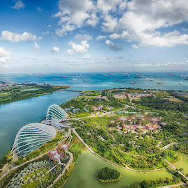 Overlooking Gardens by the Bay by A V Satish Kumar - City,  Street & Park  Vistas