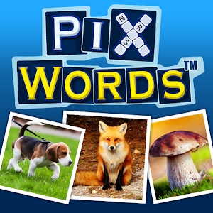 Cover art PixWords