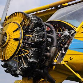 Wilga engine by Tineghe Adrian - Transportation Airplanes ( sky, wilga, plane, engine, airplane, aircraft )