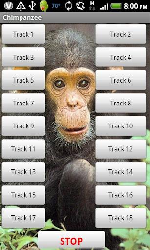 玩娛樂App|チンパンジーのサウンドエフェクト免費|APP試玩