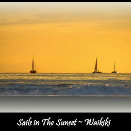 Sails in the Sunset by Mina Thompson - Digital Art Places ( topography, sailboats, waikiki beach, sunset, hawaii )