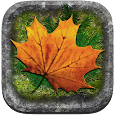 Naturfrågan Lerum APK Version 2.1