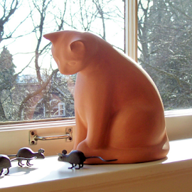 Solid Friends by William Thielen - Novices Only Objects & Still Life ( calm, mice, urban, sculpture, mouse, cat, gentle, window, seattle, still life, sunny, kitty )