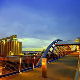 Helix Pedestrian Bridge Seattle. by Chris Kontoravdis - Buildings & Architecture Bridges & Suspended Structures ( railroad tracks, pedestrian bridge, helix bridge, pedestrian, seattle, bridge )