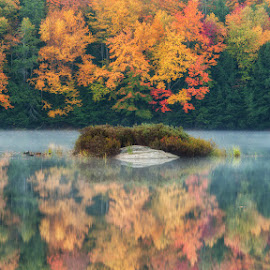 Canadian Autumn by Stephen Frank - Landscapes Weather ( reflection, muskoka, 2014, colors, indiablue, ontario, lake, colours, muskoka fall, mayflower lake, cold, lake reflections, autumn, seasons, arrowhead provincial park, fall, northern ontario, indiablue.ca, september, mist )