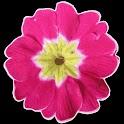 Garden Glossary icon
