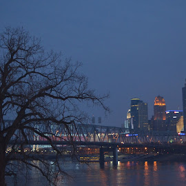 Nature vs. Technology by Tasha Payne - City,  Street & Park  Skylines ( lights, tree, night, city, river )