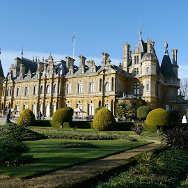 Waddesdon Manor by DTphotography Nikon Lumix - Buildings & Architecture Public & Historical ( rothschild, park, waddesdon manor, trees, gardens, national trust, architecture, shrubs )