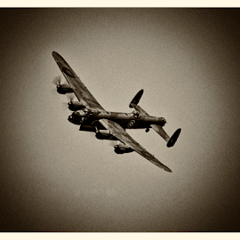 Vintage Bomber by Tommy  Cochrane - Transportation Airplanes ( ww2, world war 2, 1940's, wwii, bomber, raf, lancaster )