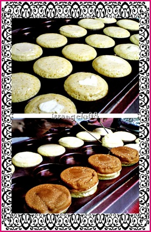 japanese cakes with cream cheese and plain cheese fillings