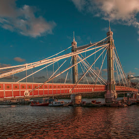 Albert bridge by Yordan Mihov - Buildings & Architecture Bridges & Suspended Structures ( england, uk, thames, london, day, albert bridge, river )