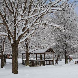 Park in the Winter by Lisa Hendrix - Landscapes Weather ( winter, park, snow, weather, bridge )