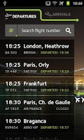 Screenshot of ANA Portuguese Airports