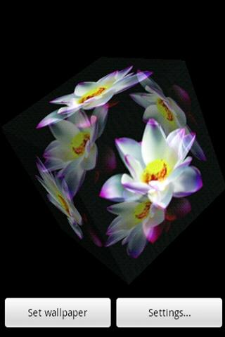 3D白蓮花