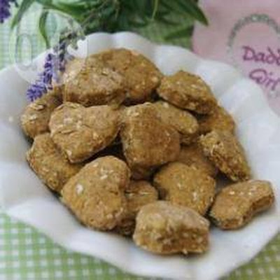 Brie's Pumpkinlicious Dog Treat Bites