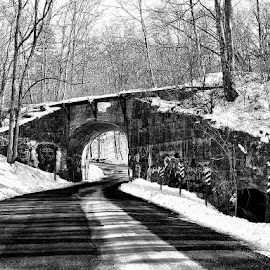 The old Rail Underpass by Gem Blue - Buildings & Architecture Bridges & Suspended Structures ( underpass, winter, /shadows, snow, rail, trees, road, shadows )