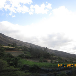 Copahuachi