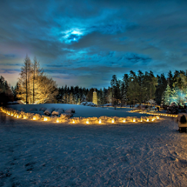 Luminaria Candles Light by Joseph Law - News & Events World Events ( moon light, candles lights, winter, paths, cold, bushes, the loved one, snow, luminaria, trees, memory )