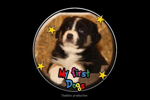 私の最初の犬