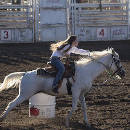 Booking by Richard Montag - Sports & Fitness Rodeo/Bull Riding ( rider, barrel racing, horse, rodeo, cowgirl, barrel, race )
