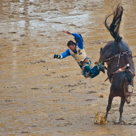 Doesn't look goo by Mike O'Connor - Sports & Fitness Rodeo/Bull Riding ( rider, calgary stampede, mud, horse, bronc, bucking, bareback )