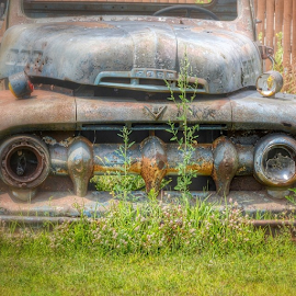 Another one bites the dust! by Wendy Greenhut - Transportation Automobiles ( urbex_lady, rurex_lady, oldtime_life_house, trailblazers_rurex, ig_captures_decay, rsa_decay, ipulledoverforthis )