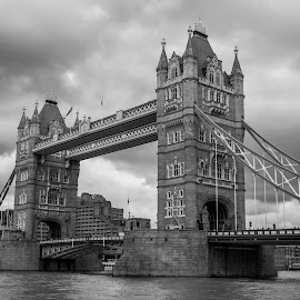 Tower Bridge, London by Stan Petru - Buildings & Architecture Public & Historical ( england, londra, black & white )