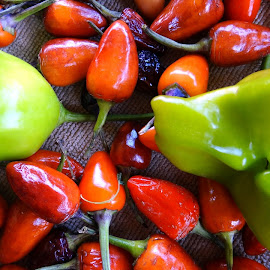 red and green peppers by Dubravka Penzić - Nature Up Close Gardens & Produce (  )