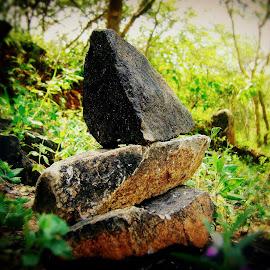 The Rocks by Ajay Poriya - Nature Up Close Rock & Stone ( nature, environement, greenery, stone, rocks )