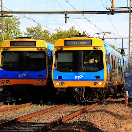 Melbourne Metro by Ned Kelly - Transportation Trains ( metropolitan, commuter, train, transportation )