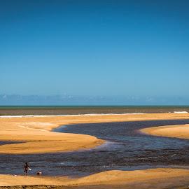 Rio e Mar by Mauro César Louzada - Landscapes Beaches