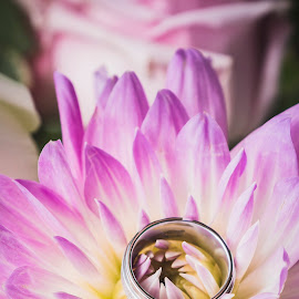 We can do no great things; only small things  with great love. by Yansen Setiawan - Wedding Details ( wedding ring, ring, wedding, eternity, wedding rings, flowers )