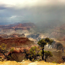 Grand Canyon by Jim Antonicello - Landscapes Mountains & Hills ( photo stream )